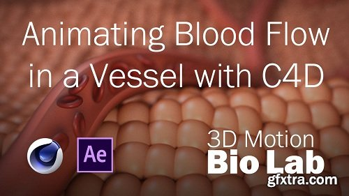 Animating Blood Flow in a Vessel with C4D