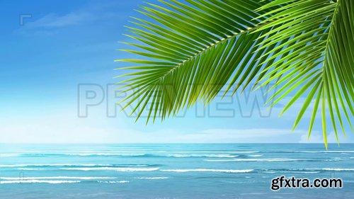 Bright Blue Tropical Beach 233050