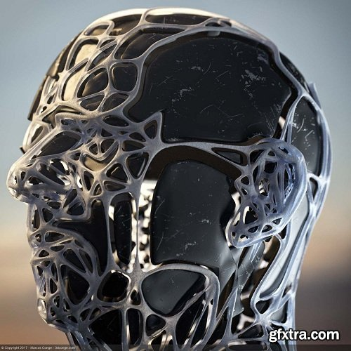 Trypogen 1.5 for Cinema 4D