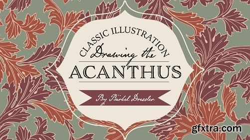 Classic Illustrations - Drawing The Acanthus