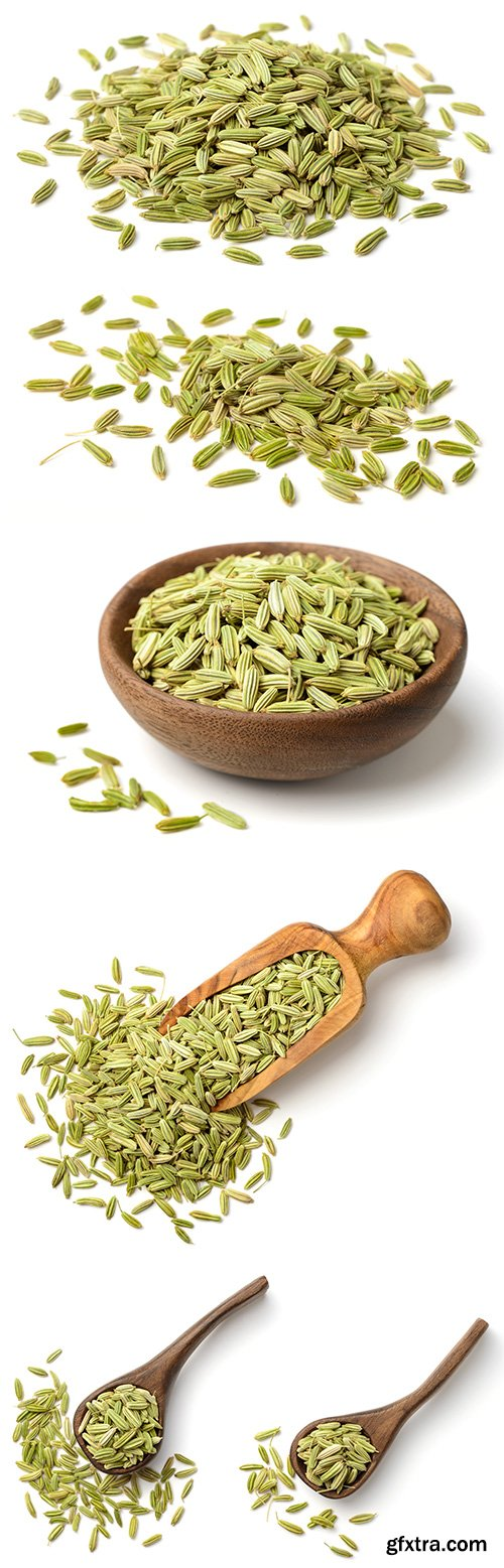 Dried Fennel Seeds Isolated - 6xJPGs
