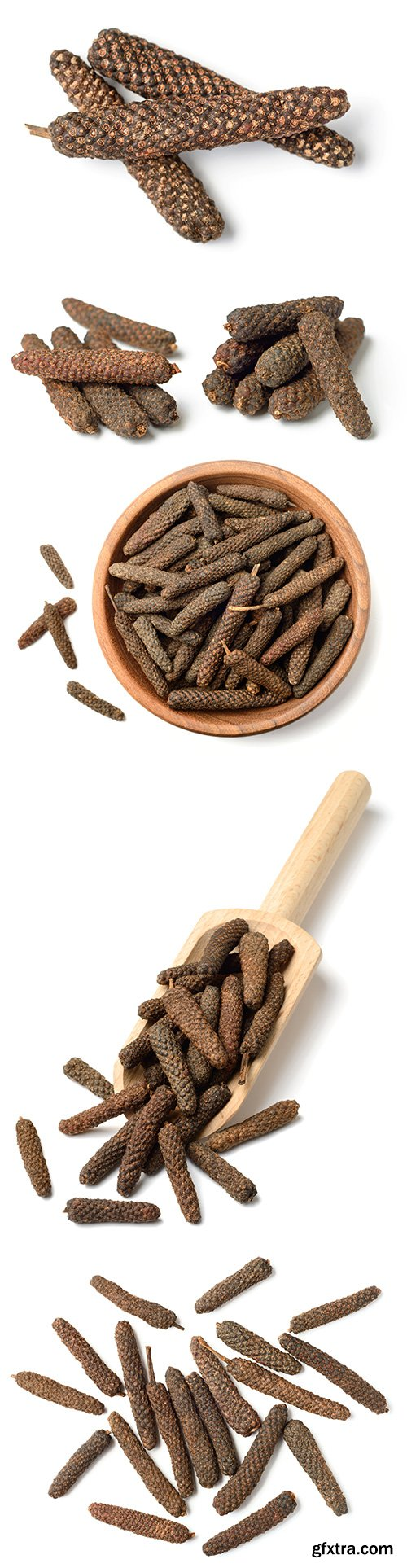 Dried Long Pepper Isolated - 6xJPGs
