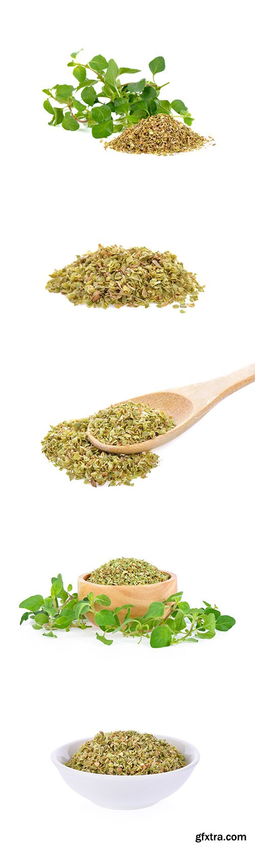 Dried Oregano Isolated - 6xJPGs