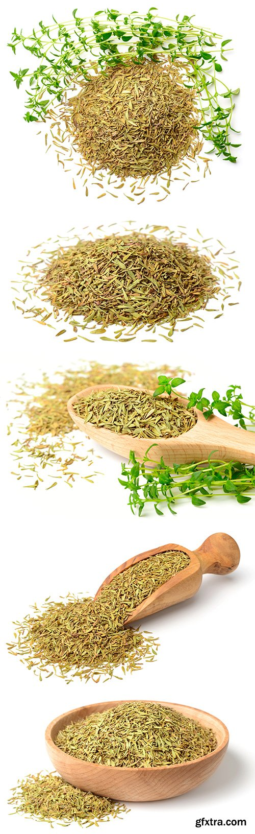 Dried Thyme Isolated - 5xJPGs