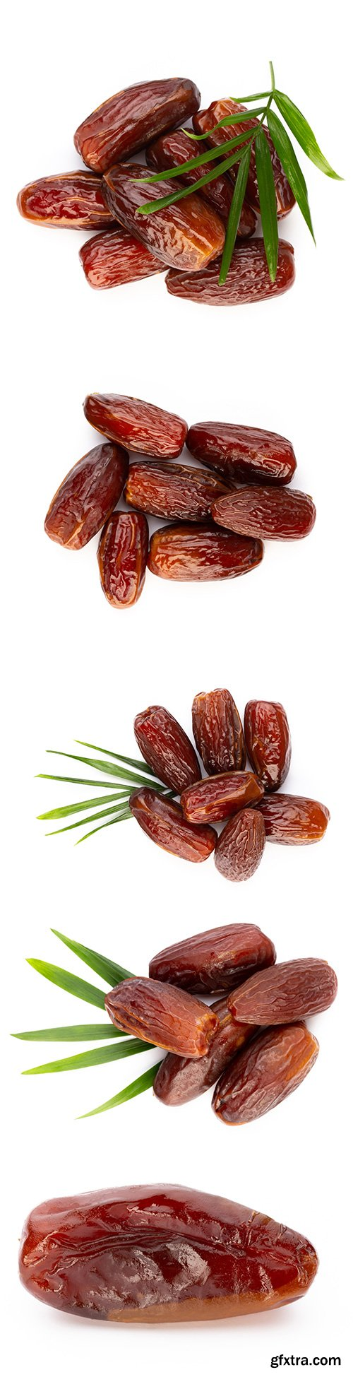Dry Dates Isolated - 5xJPGs