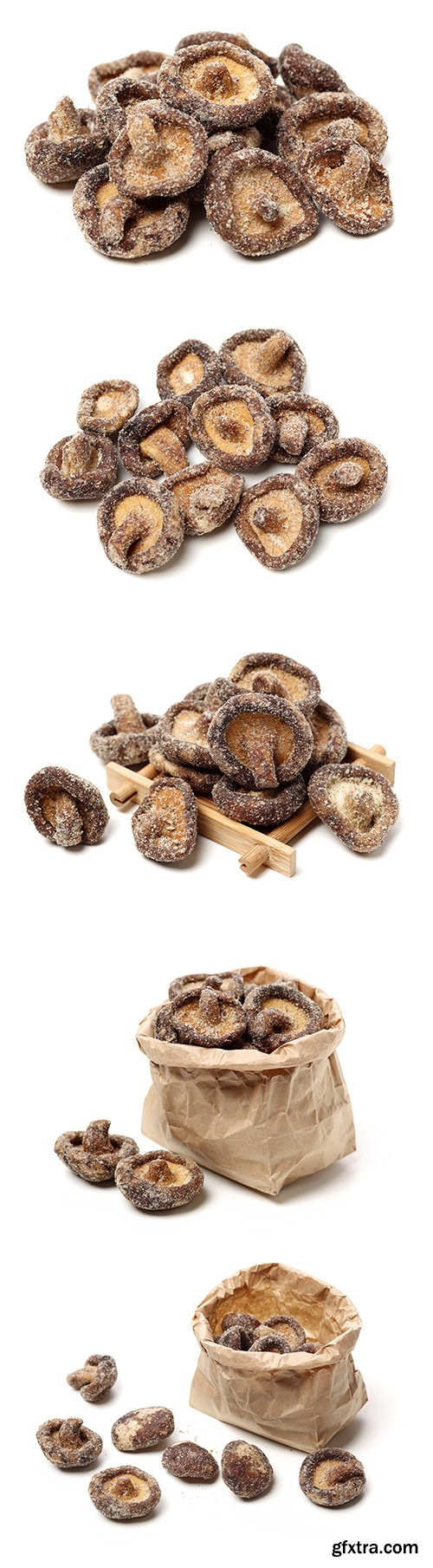 Dry Mushrooms Isolated - 5xJPGs