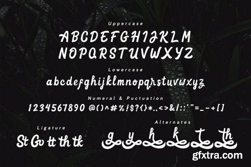 Goteru - Eyecatching Script Font