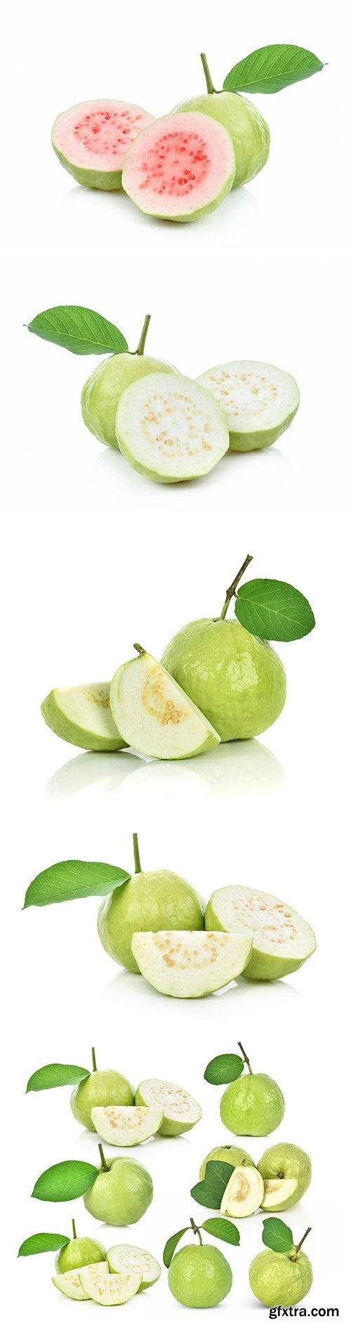 Guava Isolated - 8xJPGs
