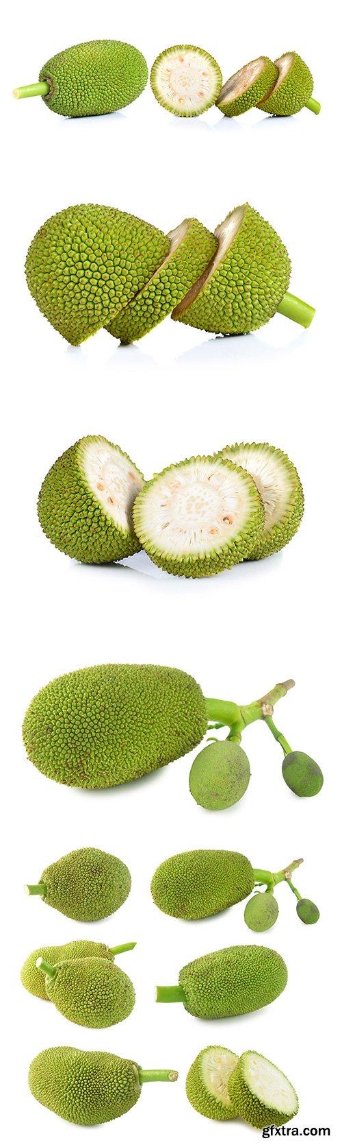 Jackfruit Isolated - 10xJPGs