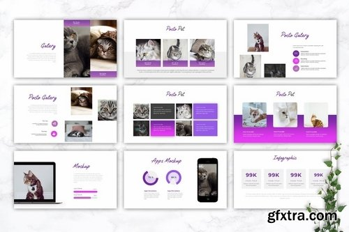 POCTO - Pet Service Powerpoint Google Slides and Keynote Templates