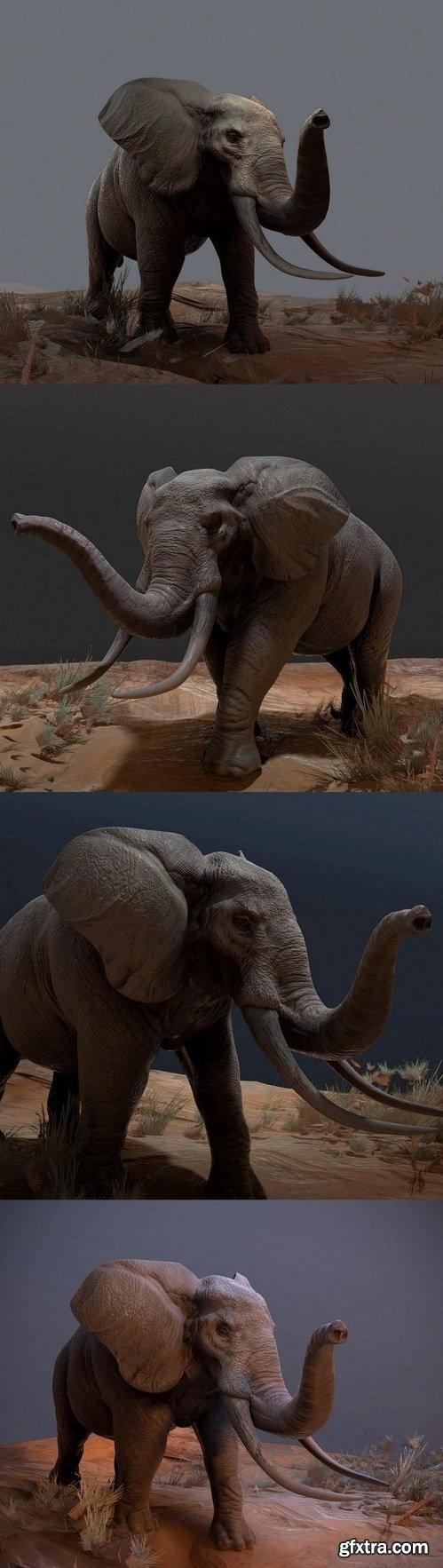 Elephant – 3D Model