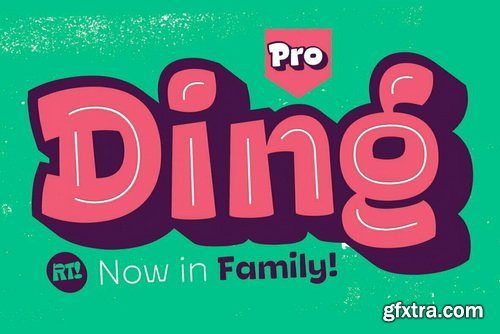 Ding Pro Font Family