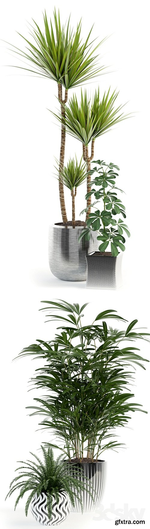 Collection of plants 90