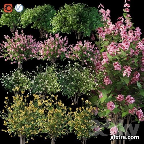 Set flowering shrubs 4