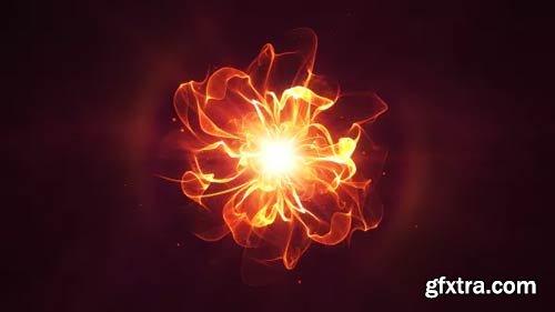 Videohive - Golden Flower Logo Reveal - 13578707