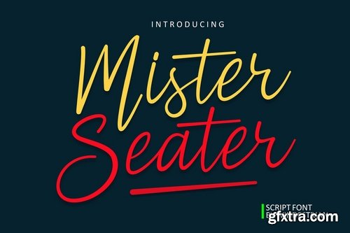 CM - Mister Seater  Script Font 3846037