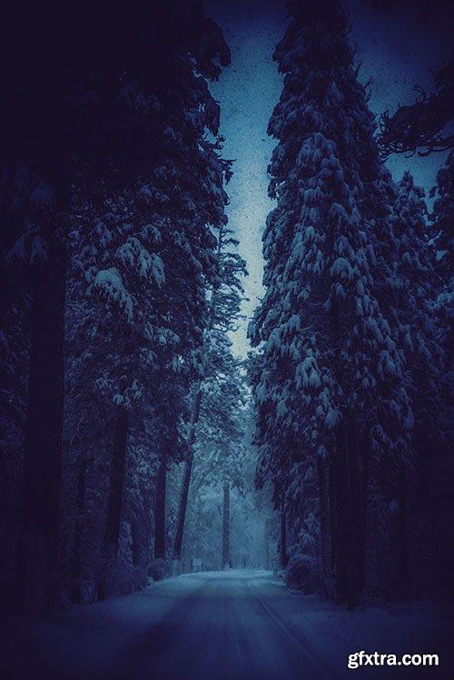 63 Winter Breath Lightroom Presets