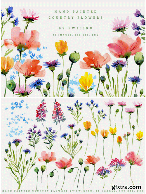 Watercolor Country Flowers I 1495257