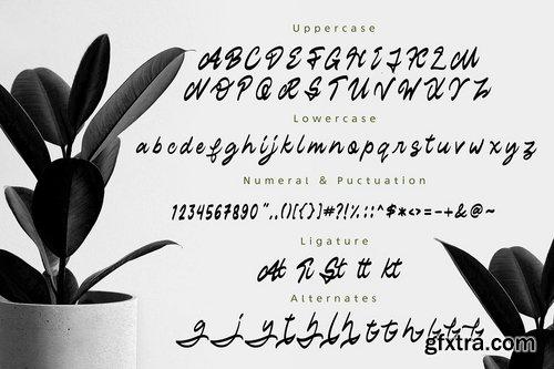 Staryl Handwritten Script Font