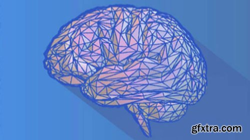 Neuroscience Synthesis To Rewire Your Brain