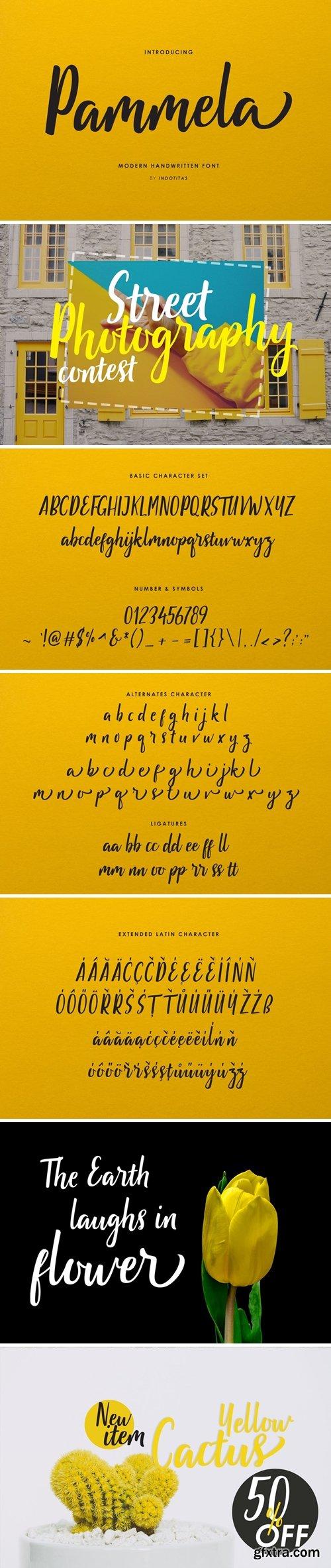 Pammela Script Font