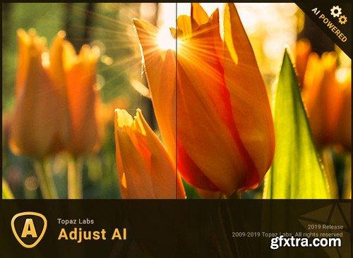 Topaz Adjust AI 1.0.2 (x64)