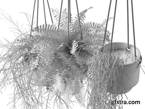 Cgtrader - Hanging Pots with Plants 3D model