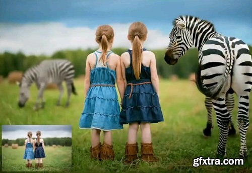 Summerana - Dancing Stripes Zebra: Editing Video