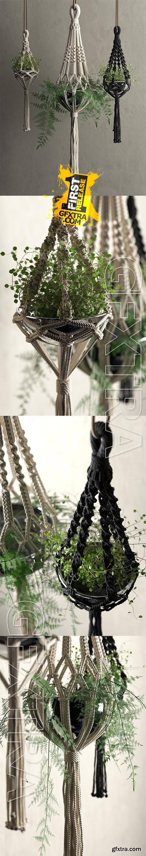 Cgtrader - Macrame Hanging Pots with Plants 3D model