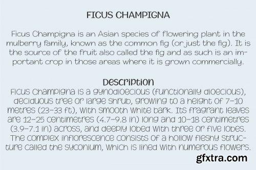 CreativeMarket - Champigna Comic Family 3855391