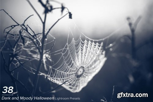 38 Dark and Moody Halloween Presets