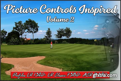 CreativeMarket - Picture Controls Inspired Vol. 2 3868438