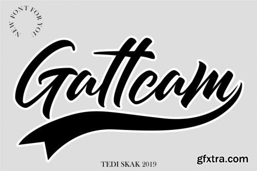 Gattcam
