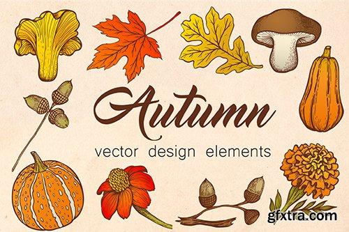 Autumn Vector Design Elements