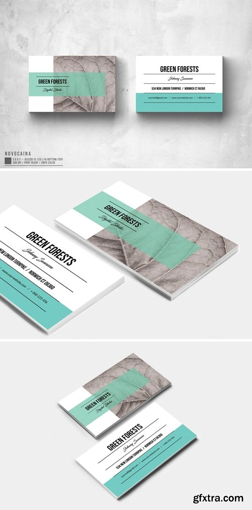 Eco App Business Card Design