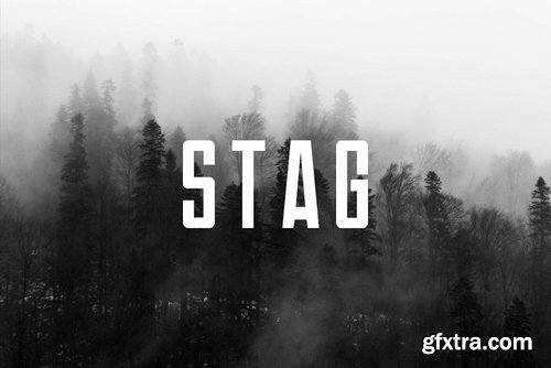 CM - STAG - Display Headline Typeface 3946366