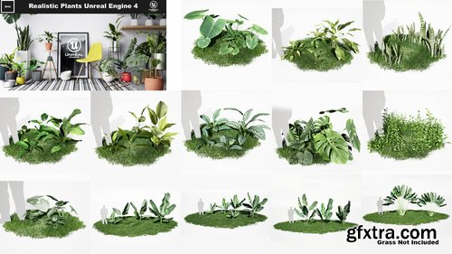 Cgtrader - Realistic Plants Pack - Unreal Engine 4 Low-poly 3D model