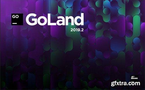 JetBrains GoLand 2019.2.4