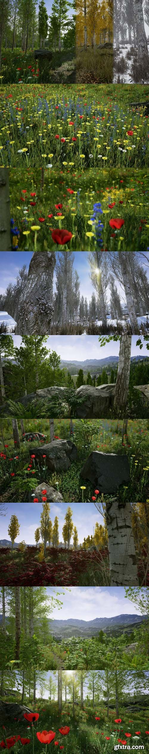 Cgtrader - Scanned Poplar and Aspen Forest with Seasons for Unreal Engine 4 Low-poly 3D model