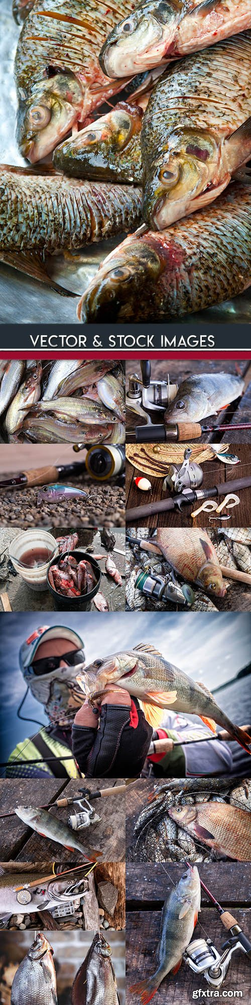 Fishing on wild nature and tackle for fishing