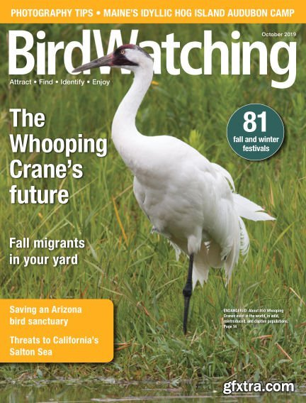 BirdWatching USA - October 2019