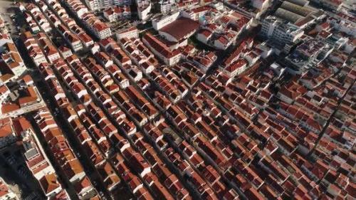 Udemy - Urbanism