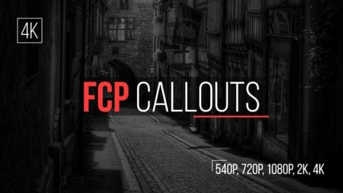 Udemy - FCP Callouts