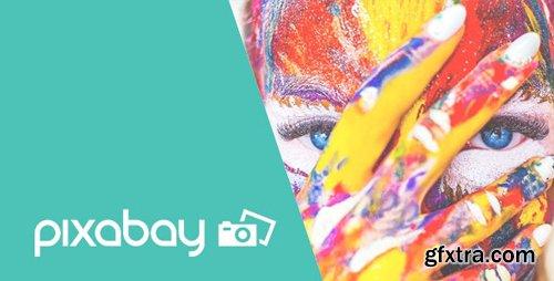 CodeCanyon - Pixabay v1.0.0 - Import Free Stock Images into WordPress - 24360985