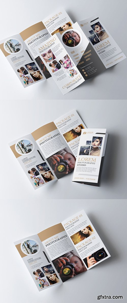 Tri-Fold Brochure Layout with Gold Accents 278613794
