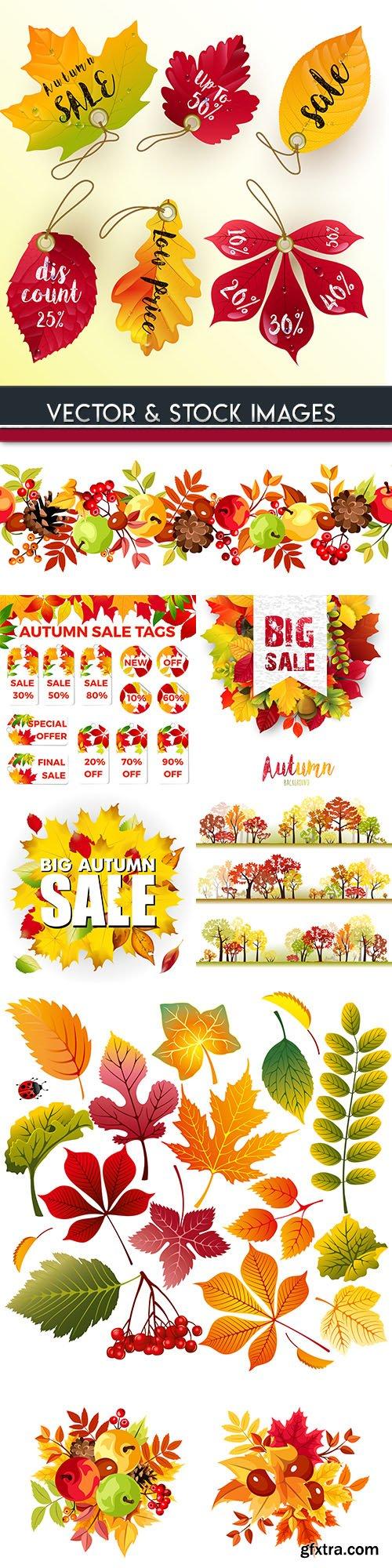 Autumn sales leaf fall bright leaves illustration