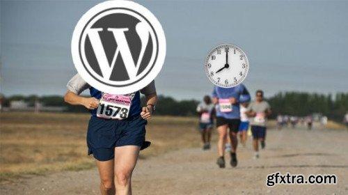 WordPress Run: Create a Website & Get Traffic in < 1 hour!