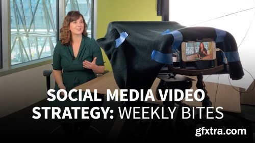 Social Media Video Strategy: Weekly Bites (Updated 22/8/2019)