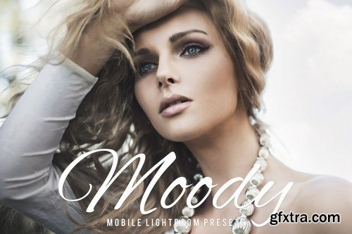 Moody Mobile & Desktop Lightroom Presets