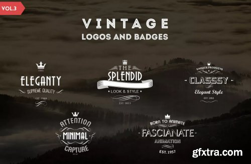 Vintage Logos and Badges Template - Vol.3